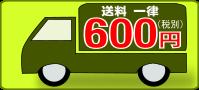 送料一律600円税別